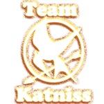 Team Katniss 3