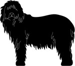 Bearded Collie Silhouette