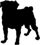 Pug Silhouette