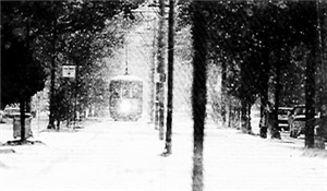 December 1989 Snow in New Orleans