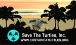 Turtles Tropical Paradise MUGS 8 STEINS