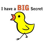 Chicks Big Secret Big Brother Again