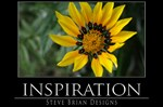 INSPIRATION33