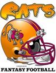 FFL Rats Helmet