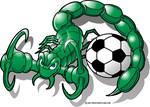 Scorpion Sting Soccer Ball
