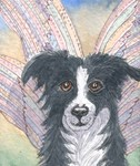 New Year Dog Fairy