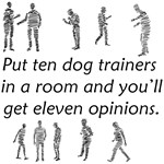 Dog Trainers