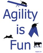 Agility Is Fun JAMD