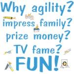 Why Agility