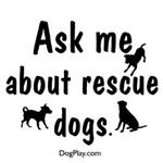 Ask About Rescue Dogs