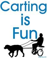 Carting is Fun JAMD