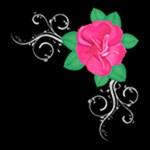 Mini Rose Flourish on Black