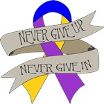 Bladder Cancer Never Give In Shirts