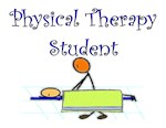 Physical Therapists II