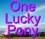 One Lucky Pony