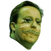Cameron is a Lizard