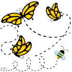 Butterflies & Bumble Bee