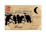 Nevermore Ravens Carte Postale
