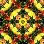 kaleido art flowers