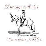 Dressage Mules