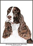 English Springer Spaniel Open Edition Gift Items