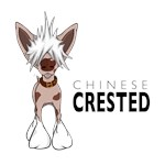 Cartoon Chinese Crested