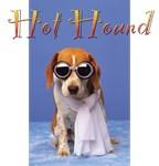 Hot Hound 1