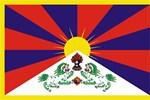Tibetan Snow Lion Flag