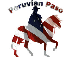 Peruvian Paso Flag