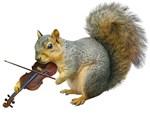 Squirrel Violin