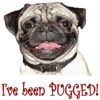 Fawn Pugged
