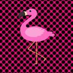 Pink Flamingo Pink Black