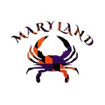 Maryland Orange & Purple