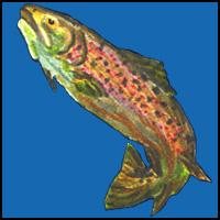 FISH ON T-SHIRTS & GIFTS