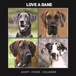 Love A Dane