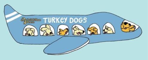 GRR Turkey Dog Resuce