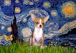STARRY NIGHT<br>& Chihuahua (fawn)