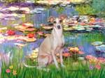 LILIES 2<br>Italian Greyhound