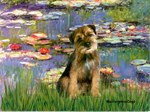 LILIES 2<br> &  Border Terrier