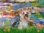 LILIES<br>& Yorkshire Terrier