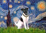 STARRY NIGHT<br>& Smooth Fox Terrier