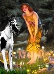 MIDSUMMER'S EVE <br>& Harlequin Great Dane