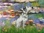 WATER LILIES<br>& Dalmatian