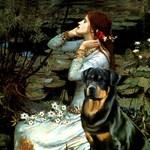 OPHELIA<br>& Rottweiler