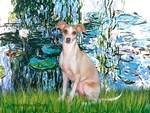LILIES I<br>Italian Greyhound