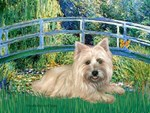 LILY POND BRIDGE<br>& Wheaten Cairn Terrier