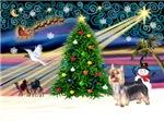 CHRISTMAS MAGIC<br>& Silky Terrier #10
