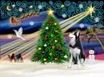 CHRISTMAS MAGIC<br>& Siberian Husky #1