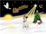 NIGHT FLIGHT<br>& Jack Russel Terrier
