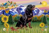 MOUNTAIN COUNTRY<br>& Rottweiler #6